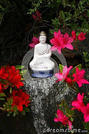 Free Buddha S Birthday Royalty Free Stock Image - 730436