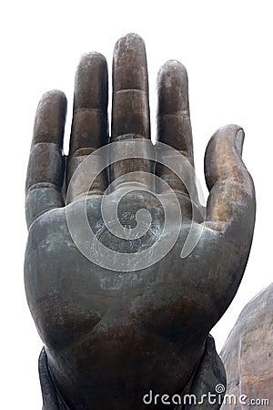 Buddha s hand