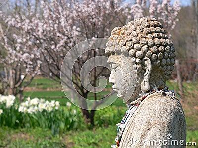Buddha: spring garden
