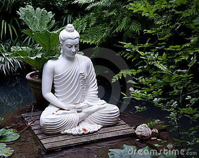 Buddha statue in pond