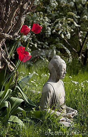 Buddha and tulips