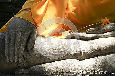 Buddhas Hands