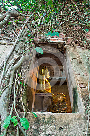 Buddhist church surrounded by tree root