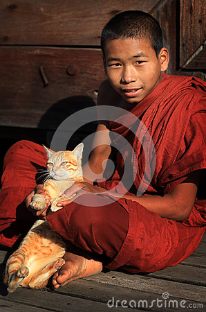 Buddhist novice with cat Editorial Photography
