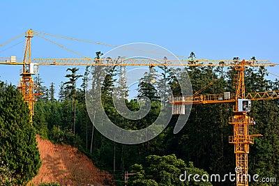 Budowa obok wzgórza i lasu