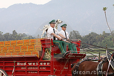 Budweiser Clydesdale Beer Wagon Editorial Stock Image