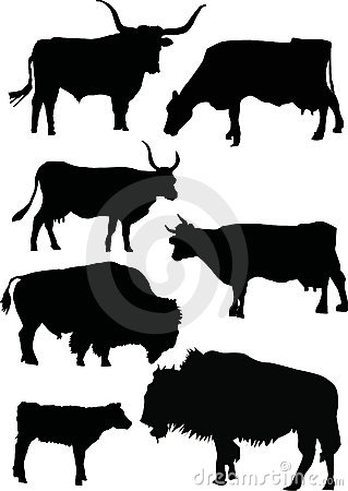 Buffalo and cow silhouettes