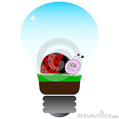 Bug inside in lightbulb