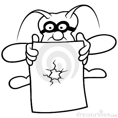 Bug and Paper