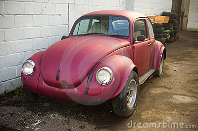 Bug , small car