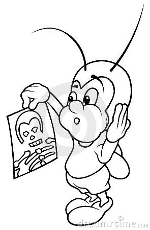 Bug and X-ray Picture