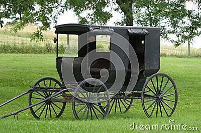 Buggy de Amish