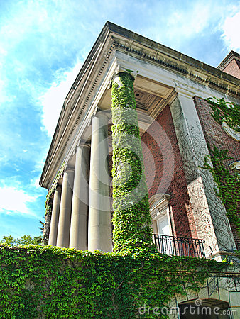Building with ivy and pillars