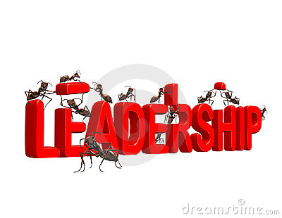 Building leadership growth to market leader