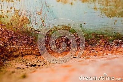 Building Rust