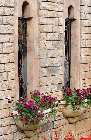 Building windows and flower parterre