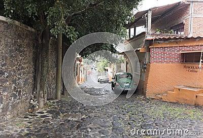 Buildings along a street, Mexico City, Mexico