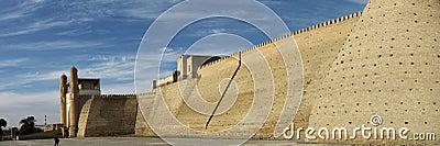 Bukhara walls