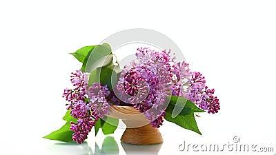 Bukiet pięknych kwiatów w wazonie zbiory