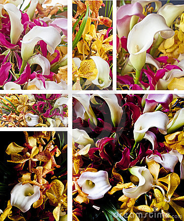 Bukieta kwiat