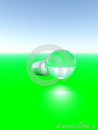 Bulb 19