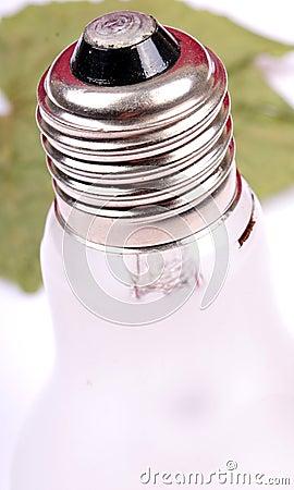 Bulb base