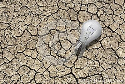 Bulb on Dry land
