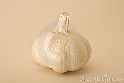 Bulb of Garlic