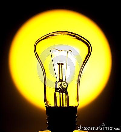 Bulb in the sun