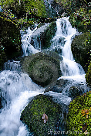 Bulgarian forest stream