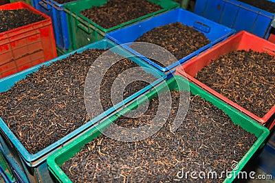 Bulk tea in boxes
