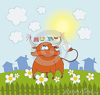Bull on farm field