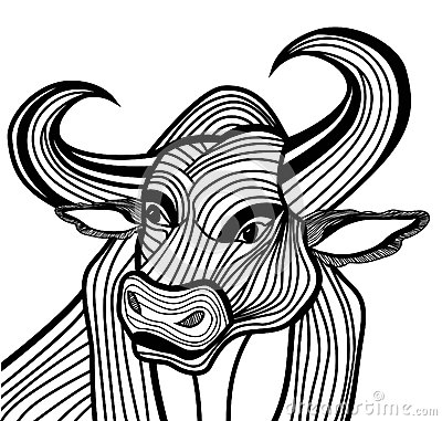 Bull head vector animal illustration for t-shirt.