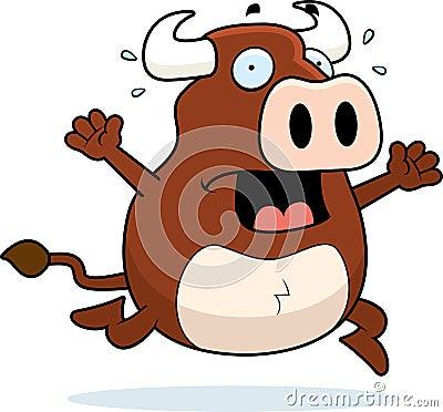 Bull Panic
