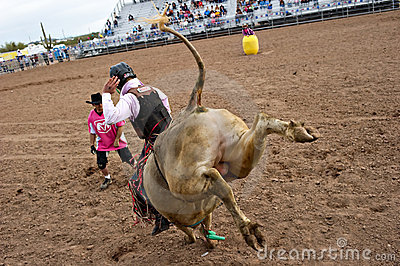 Bull riding Editorial Image