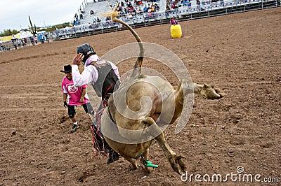 Bull riding Editorial Image