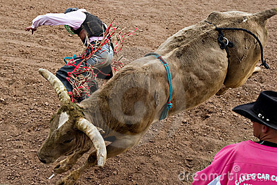 Bull riding Editorial Stock Photo
