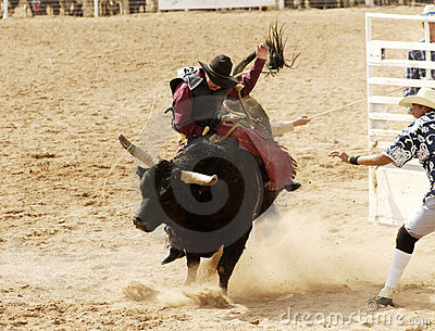 Bull Riding 3
