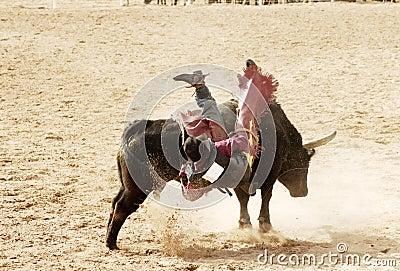 Bull riding 4