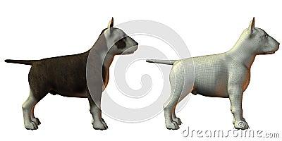 Bull terrior dog 3d model