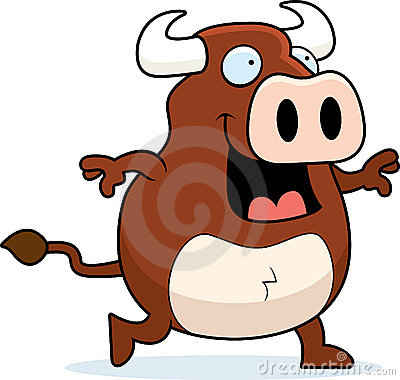 Bull Walking