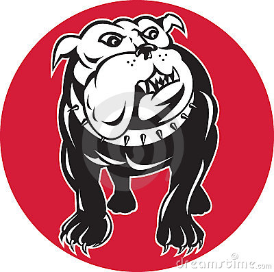 Bulldog mongrel dog front view