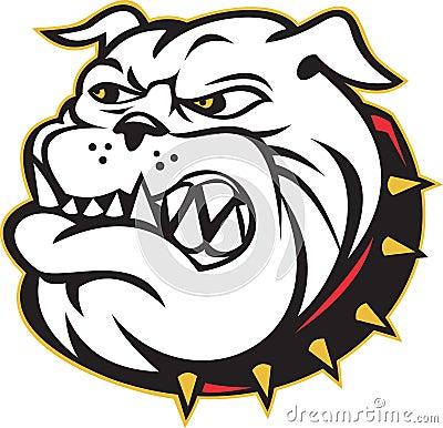 Bulldog mongrel dog head angry