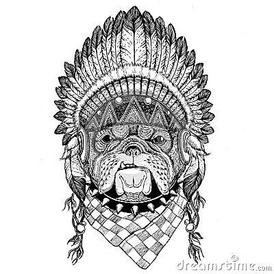 Bulldog Wild animal wearing indian hat Headdress with feathers Boho ethnic image Tribal illustraton Stock Photo