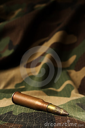 Bullet on camouflage backgroud