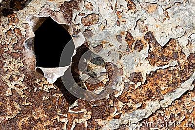 Bullet hole on the rusty iron