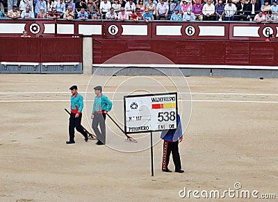 Bullfighting carnival Editorial Photo