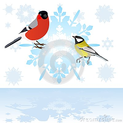 Bullfinch and tits on a snowflake.