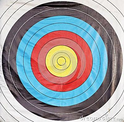 Bulls eye target