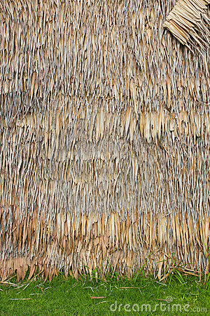 Bulrush wall.